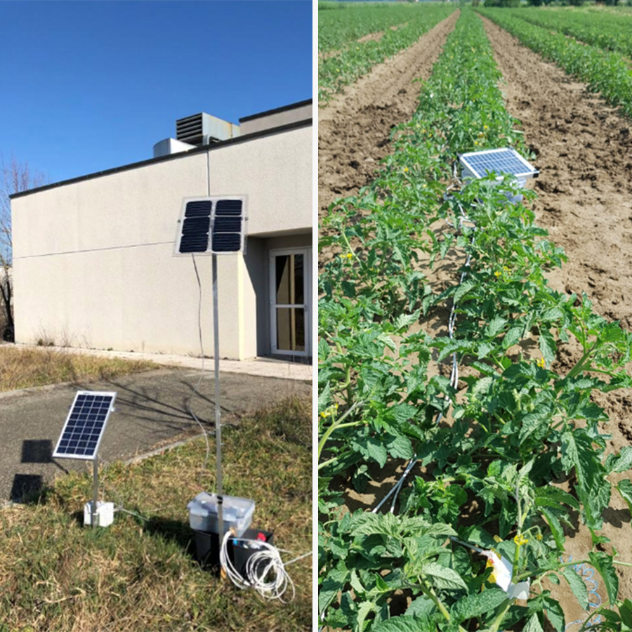 solar panels for smart agriculture